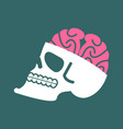 skull with brains isolated head of human skeleton vector image vector image