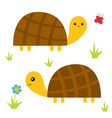 turtle tortoise set cute cartoon character family vector image