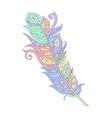 bohemian boho bird feather vector image