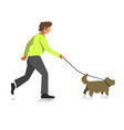 boy walking dog colorful full length vector image
