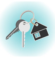 keys with keychain house shaped key holder vector image