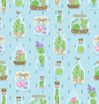 Terrariums on blue background seamless pattern