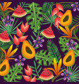 tropical garden with papaya and watermelon vector image vector image