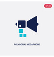 two color polygonal megaphone icon from geometry vector image vector image