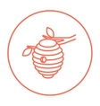 Bee hive line icon vector image