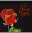 close-up red and orange rose bud on black vector image vector image