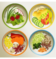 Four seasons plate vector image vector image