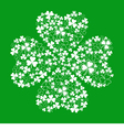 green greeting card with clover shamrock vector image
