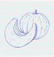 pumpkin hand drawn sketch on notebook sheet vector image vector image