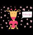 valentine day cute funny giraffe vector image vector image