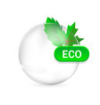 eco sign leafs and drop with shadow vector image vector image