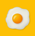 fried egg isolated on yellow background vector image vector image