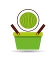 green basket fresh watermelon design icon vector image