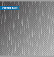 realistic rain texture on transparent background vector image