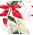Seamless pattern with red poinsettia plant-04 vector image vector image