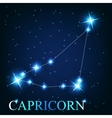 the capricorn zodiac sign of the beautiful bright vector image vector image