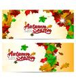 Autumn season abstract background vector image