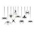 black spiders set vector image