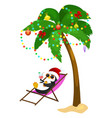 cartoon penguin laying in hammock under palm tree vector image vector image