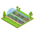 greenhouse isometric view vector image