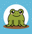 cute and lovely frog cartoon vector image