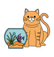 aquarium bowl with colors fish and cat vector image vector image