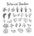 botanical doodle set vector image