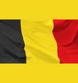 flag kingdom belgium vector image