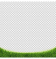 green grass isolated transparent background vector image vector image