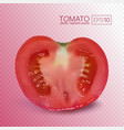 ripe red half tomato on transparent background vector image