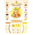 spice herb icons healthy food icon set vector image vector image