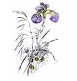Summer garden flowers vector image