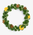 xmas wreath garland spices orange and fir vector image