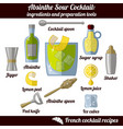 absinsour infographic set isolated vector image vector image