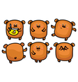 brown bear set vector image vector image