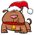 dog on christmas time cartoon vector image vector image
