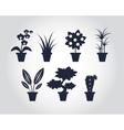 Flat style Houseplants vector image vector image