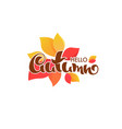 hello autumn bright fall leaves and lettering vector image vector image