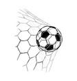 soccer ball goal vector image vector image