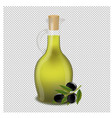 bottle of olive oil isolated transparent vector image vector image