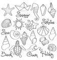 hand drawn doodle seashells and sea elements set vector image vector image