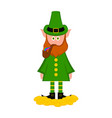 irish elf with gold coins and tobacco pipe vector image