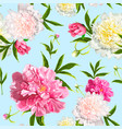 seamless pattern with peonies flowers vector image