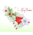 Christmas Branch with Berry vector image