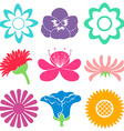 Colourful floral templates vector image vector image