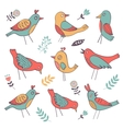 Cute colorful birds collection vector image vector image