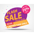 Flash Sale Banner and Best Offer design vector image vector image