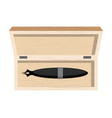 fountain pen in case pen stick in wooden box vector image vector image