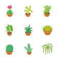 home cactus icons set cartoon style vector image