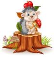 Little hedgehog holding mushroom on tree stump vector image vector image